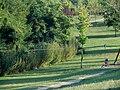 Cesena - Parco Ippodromo - Riserva naturale - 02.JPG