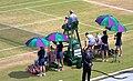 Chairs at Wimbledon.jpg
