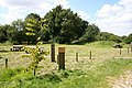 Chambers Plantation picnic area - geograph.org.uk - 519604.jpg
