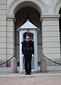 Change of guards in front of the Royal Palace in Oslo 1.JPG