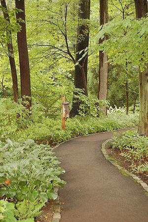 Chanticleer Garden - Image: Chanticleer Gardens Asian Woods 2000px
