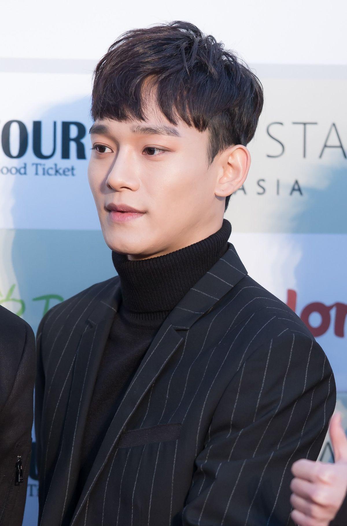 Chen Singer Wikipedia