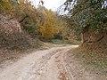 Cherkas'kyi district, Cherkas'ka oblast, Ukraine - panoramio (401).jpg