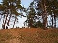 Cherkas'kyi district, Cherkas'ka oblast, Ukraine - panoramio (557).jpg