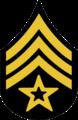Chevron - Color Sergeant Cavalry 1902-1909.png