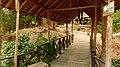 Chiang Mai, 2016 april - panoramio - Roma Neus (84).jpg