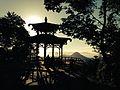 Chinese View - Vista Chinesa - Rio de Janeiro.jpg