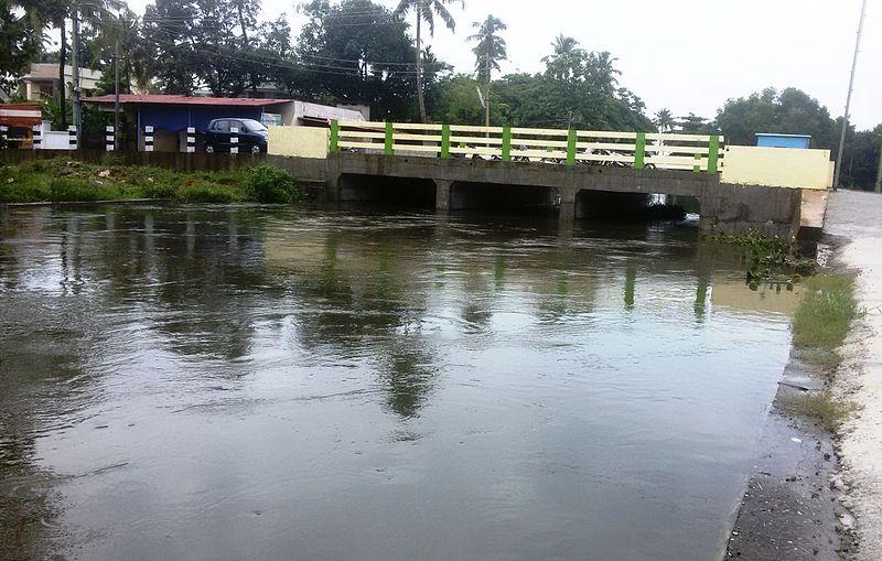 File:Choorankal Punthalathazham bridge.jpg