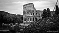 Christian Papenfus Photograph of Coliseum.jpg