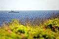 Christmas Island (5774536659).jpg