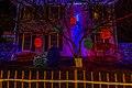 Christmas Lights (23347478360).jpg