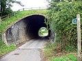 Chudleigh tunnel - geograph.org.uk - 871166.jpg