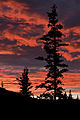 Classic Alaskan Sunset (6473139085).jpg