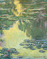 Claude Monet - Waterlilies - Google Art Project (hgEnPzjBK2STHg).jpg