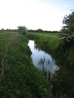 Claydon Brook near Addington - geograph.org.uk - 433803