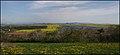 Coal ^ Gas ^ Rape ^ Solar Energy - panoramio.jpg