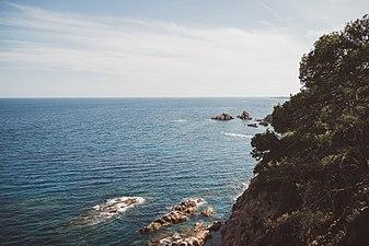 Coastline View.jpg