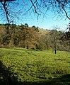 Collard Hill, Compton Dundon - geograph.org.uk - 81355.jpg