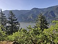 Columbia Gorge from Dog Mountain.jpg