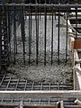 Concrete slowly flowing through the rebar beam cage.jpg