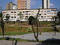 Cond. Res. V. Guiomar 27 (clique na foto) - panoramio.jpg