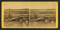 Confederate soldiers as they fell at the Battle of Antietam, by Gardner, Alexander, 1821-1882.png