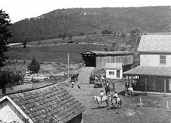 Cootes Store in 1895