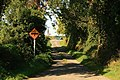 Country Lane - geograph.org.uk - 974250.jpg