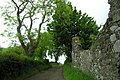 Country lane above Lemnalary - geograph.org.uk - 1439182.jpg