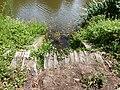 Cours d'eau entre La Rochette et Caradec 01.jpg
