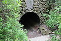 Cow tunnel under Race Lane.JPG