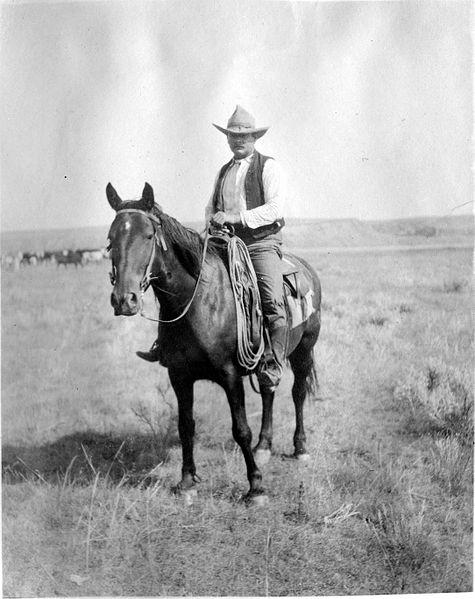File:Cowboy 20060805173639.jpg