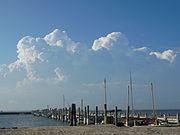Cumulus congestus over Long Island
