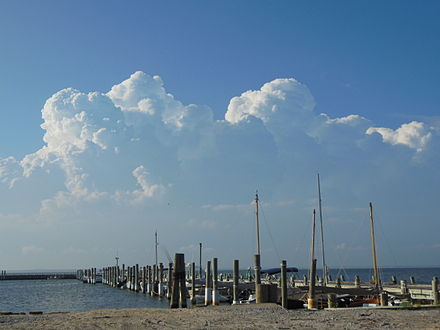 Cumulus congestus clouds over Long Island on a summer afternoon Cumulus congestus over Long Island.JPG