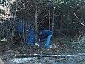 Cutting wood - panoramio.jpg