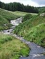 Cwm Doethie Fawr, Ceredigion - geograph.org.uk - 520164.jpg