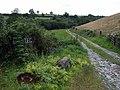 Cwm Dyfnant county boundary - geograph.org.uk - 906363.jpg