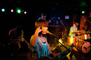 DEERHOOF February 10, 2011.jpg