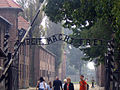 Day 7- Welcome To Auschwitz (45084482).jpg