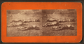 Dead soldiers near Wheatfield, from Robert N. Dennis collection of stereoscopic views.png