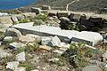 Delion on Paros 143804.jpg