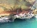 Delmiro Gouveia - State of Alagoas, Brazil - panoramio (37).jpg
