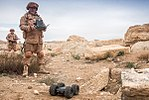 Demining of Palmyra 2017 09.jpg