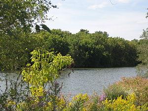 Desjardins Canal - Desjardins Canal
