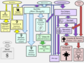 Diagram of American New Religious Movements.png
