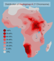 Distribution of Y-Chromosome Haplogroup A in Africa.png