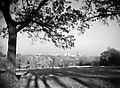 Dix Hill Raleigh 1942. From NC Conservation and Development Department, Travel and Tourism Photo Files, North Carolina State Archives, Raleigh, NC. (6237921843).jpg