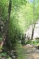 Dolina Osaničke reke 16.jpg