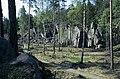 Domedagsdalen - KMB - 16001000011776.jpg