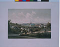 Dorpat vom Dome aus 1860 Höflinger.jpg